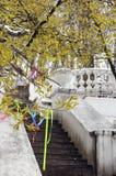 Starzy betonowi schodki z dekoracyjną wazą i poręczem Obraz Royalty Free