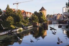 Starzy domy na deptaku rzeka w Gdańskim przy świtem Polska obraz stock