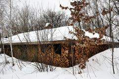 Starzy drewniani domy pod pokrywaj?cym strzech? dachem zakrywaj?cym z ?niegu i woodpile statywowymi pobliskimi starymi drzewami zdjęcie royalty free
