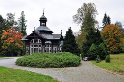 Starzy drewniani zdrojów budynki Obraz Royalty Free