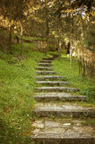 Starzy kamieni kroki zdjęcia royalty free