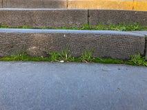 Starzy kamieni kroki przerastający z trawą wzrost zawieszenie most fotografia stock