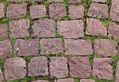 Starzy kamienie na zielonej trawie zdjęcia royalty free