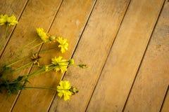 Starzy kolorów żółtych kwiaty umieszczający na stole Obrazy Stock