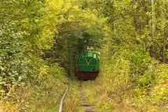 Starzy lokomotywa liście od drzew Tunel miłość - cudowny miejsce tworzył naturą Obrazy Royalty Free