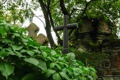 Starzy przerastający grób i krypta w zaniechanym cmentarzu zdjęcie stock