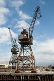 Starzy Równi Luffing żurawie - Fremantle Zdjęcie Stock