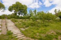 Starzy rujnujący betonowi schodki z zielonymi drzewami, trawa i błękitny s Zdjęcia Royalty Free