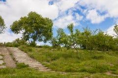 Starzy rujnujący betonowi schodki z zielonymi drzewami, trawa i błękitny s Zdjęcie Royalty Free