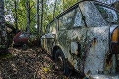 starzy samochody między drzewami obraz royalty free