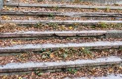 Starzy schodki w złym stanie z jesień liśćmi bardzo fotografia stock
