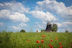 starzy wiatraczków stojaki na canola polu przed niebieskim niebem z białymi chmurami zdjęcia stock