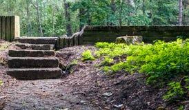 Starzy zaniedbani kamienni schodki w lesie zdjęcie stock