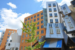 Stata Center of MIT Stock Photography