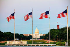 State Capitol building in Washington, DC. In the evening royalty free stock photo