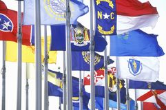 State flags of America Royalty Free Stock Photography