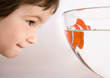 State of friendship. Three years old boy watch to the eyes of fish Stock Images