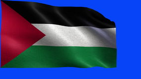 State of Palestine, Flag of Palestine - LOOP Royalty Free Stock Photography