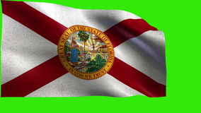 State of The United States of America, USA state, Flag of Florida, FL, Tallahassee, Jacksonville, March 3, 1845 - LOOP stock footage
