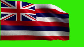 State of The United States of America, USA state, Flag of Hawaii, HI, Honolulu, August 21 1959 - LOOP stock video footage