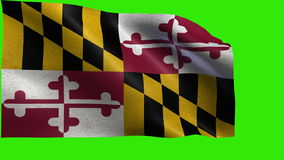 State of The United States of America, USA state, Flag of Maryland MD Annapolis, Baltimore, April 28 1788 - LOOP stock video footage