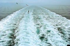 statek wycieczkowy kilwater Obraz Stock