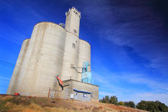 A Stately Grain Elevator. A large stately busy grain elevator to collect and ship wheat in Grass Valley in eastern Oregon under clear blue skies royalty free stock image