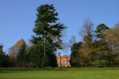 Stately Home Grounds. Tree line giving shape to the sky line in the grounds of an English stately home Stock Photos