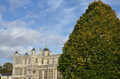 Stately home with tree. In foreground stock photo