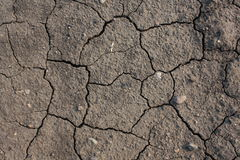 Stati di siccità Fotografie Stock