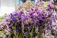 Statice blommar på blommamarknaden Arkivbilder