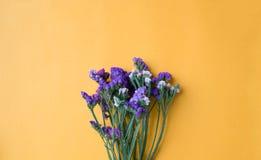 Statice blommor på gulingpappersbakgrund Royaltyfri Bild