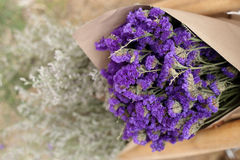Statice flower bouquet, soft focus Stock Images