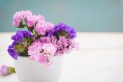 Statice sinuata flower Stock Photography