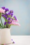 Statice sinuata flower Royalty Free Stock Photo