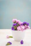 Statice sinuata flower Stock Image