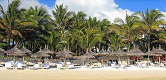 Station balnéaire tropicale en île des îles Maurice images libres de droits