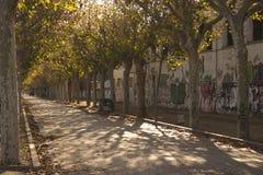 Station Benicarlo de Paseo Images libres de droits