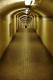 Tube de station de métro Photographie stock