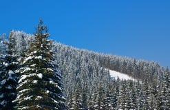 Station de sports d'hiver Photographie stock libre de droits