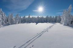 Station de sports d'hiver alpestre Voie ou tra?n?e de ski de fond Jour ensoleill? Temps de No?l C?l?bration d'an neuf heureux photos libres de droits