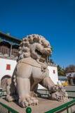 Station de sports d'hiver de Chengde dans Putuo, province de Hebei par le temple de la porte d'une paire de lions Photographie stock libre de droits