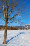 Station de sports d'hiver de montagnes Strobl Autriche Image libre de droits