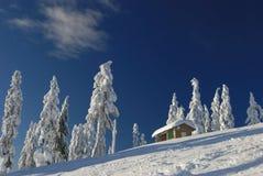 Station de sports d'hiver de seymour de Mt. avec la neige fraîche photos libres de droits