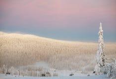 Station de sports d'hiver, Ruka, Finlande Images libres de droits