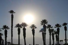 Station de vacances de désert Photos libres de droits