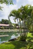 Station de vacances de Klong Prao Cottages sur la baie dans un jardin tropical Images stock