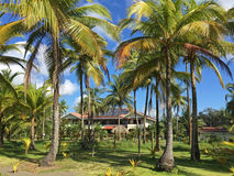 Station de vacances en le Costa Rica Images libres de droits