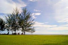 Station de vacances et station thermale du ` s Tanjung Aru de La de Shangri Photo libre de droits