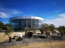 Station de vacances exotique et moderne avec les oliviers image libre de droits